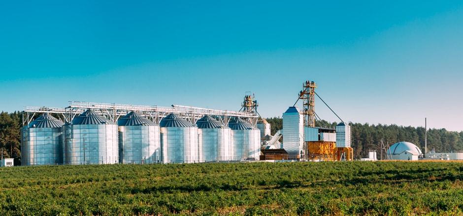 Todo lo que necesitas saber sobre el secado de granos