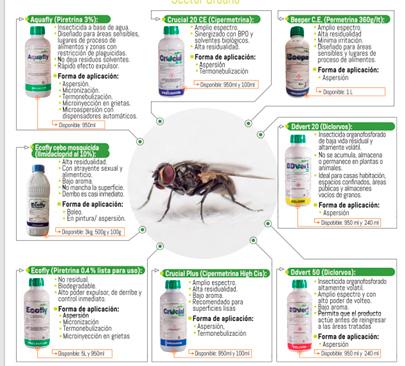 mosca infografía