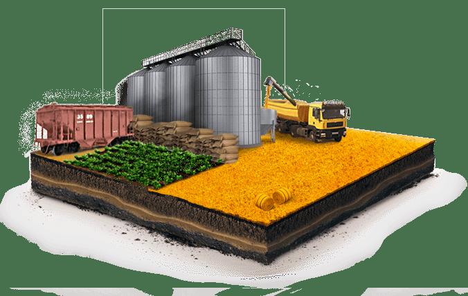 Almacenaje de granos